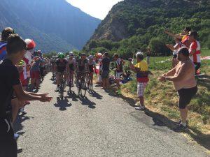 Lacets Tour de France 15